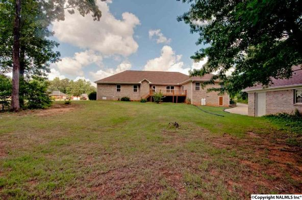 133 Turtle Bend Dr., Toney, AL 35773 Photo 43