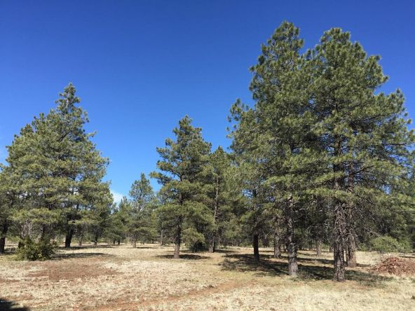 3602 E. Mountain Man Trail, Williams, AZ 86046 Photo 25