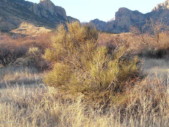 1021 W. Deer Rd., Portal, AZ 85632 Photo 13