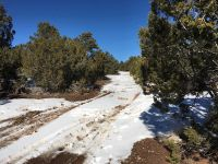 Home for sale: Lot O Hidden Valley Ranch, San Ysidro, NM 87538