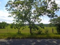 Home for sale: 2+/- Ac Henry Cty 131, Columbia, AL 36319