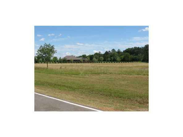 2a Vaughn Crossing Rd., Pike Road, AL 36064 Photo 4