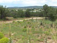 Home for sale: 0 Lot 1 Pinto Trail, Corona, NM 88318