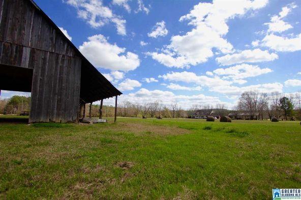 2353 Stallings Rd., Centreville, AL 35042 Photo 24