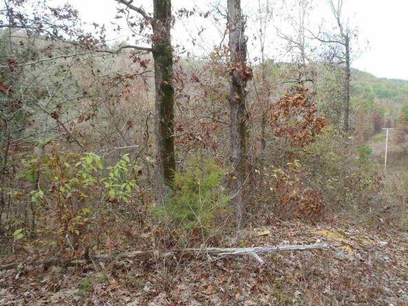 108 Buckthorn, Mountain Pine, AR 71956 Photo 7