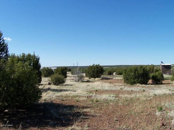 8482 Basalt Pl., White Mountain Lake, AZ 85912 Photo 18