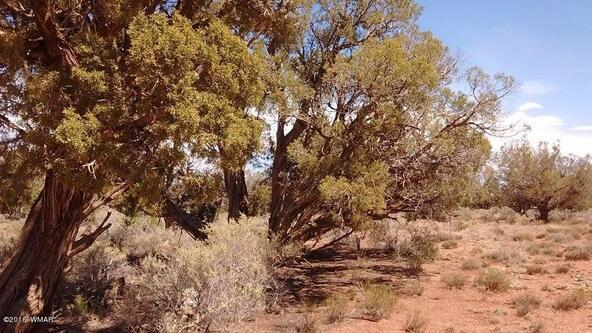 8808 E. Concho Hwy., Snowflake, AZ 85937 Photo 6