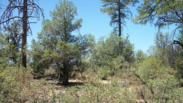 509 N. Chaparral Pines Dr., Payson, AZ 85541 Photo 18