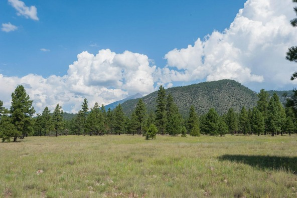 8r Lockett Ranches, Flagstaff, AZ 86001 Photo 5
