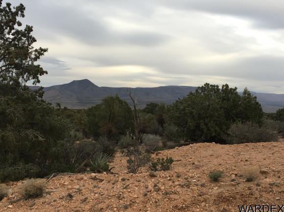 7340 N. Frerichs Ranch Rd., Hackberry, AZ 86411 Photo 13
