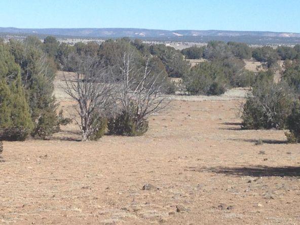 246 Antelope Run, Ash Fork, AZ 86320 Photo 4