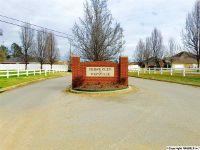 Home for sale: 201 Magnolia Glen Dr., Huntsville, AL 35811