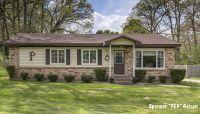 Home for sale: 321 Floral Dr., Belding, MI 48809