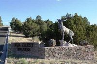 Home for sale: Star Ln. Dr., Eagar, AZ 85925