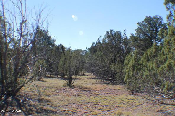 2 Acres Off Of Acr N. 3114, Vernon, AZ 85940 Photo 11