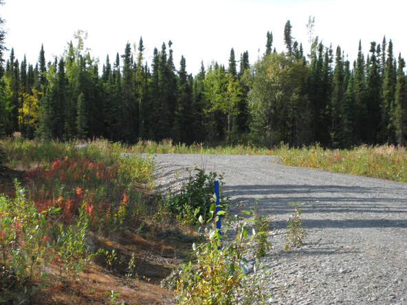L6 B4 Fairweather Loop, Soldotna, AK 99669 Photo 3