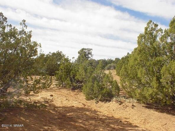 1b N. 8690, Concho, AZ 85924 Photo 26