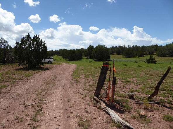 266 No Name, Ash Fork, AZ 86320 Photo 12