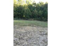 Home for sale: 120 Covington Dr., Ball Ground, GA 30107
