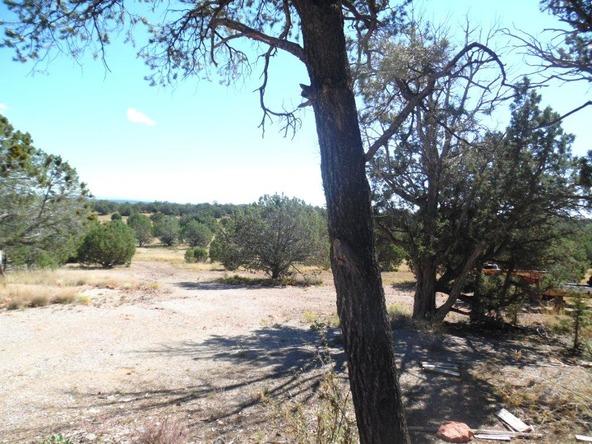 459 Hardrock Rd., Seligman, AZ 86337 Photo 39