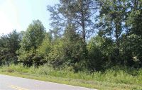 Home for sale: Bostic, NC 28018