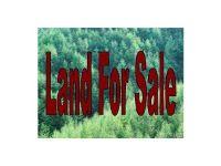 Home for sale: 0 Hanover Courthouse Rd., Hanover, VA 23069