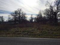 Home for sale: 7350 West Farm Rd. 170, Republic, MO 65738