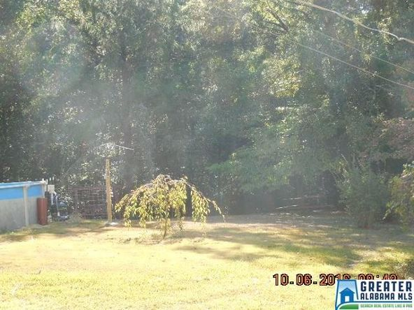 17226 Hwy. 78, Fruithurst, AL 36262 Photo 32