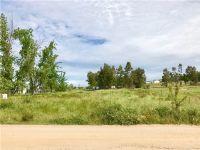 Home for sale: 23730 Mclane Avenue, Corning, CA 96021