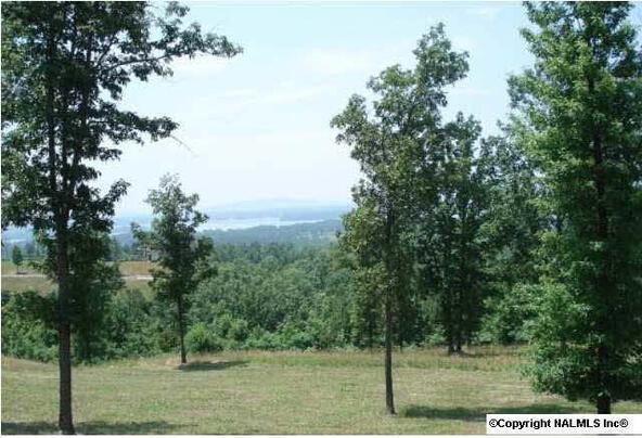 217 River Ridge Dr., Cedar Bluff, AL 35959 Photo 8