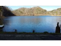 Home for sale: Lot 2 & 2a Cable Hollow Rd., Butler, TN 37640