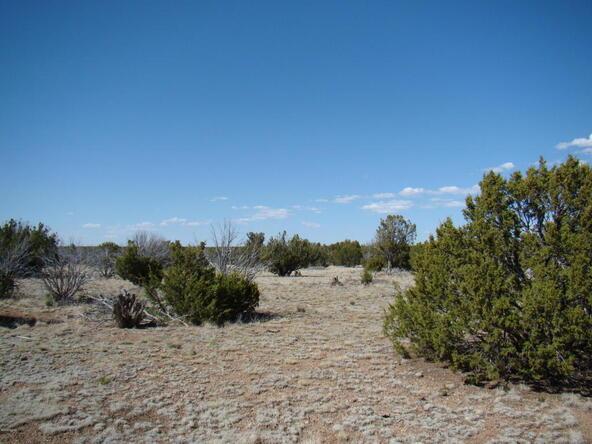 2319 Sitgreaves St., White Mountain Lake, AZ 85912 Photo 11
