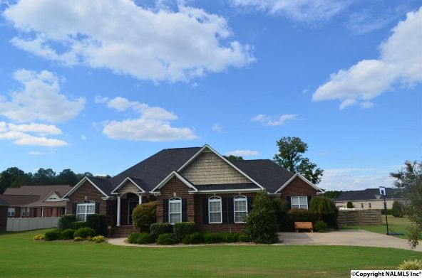 2592 Veranda Trace, Hokes Bluff, AL 35903 Photo 1