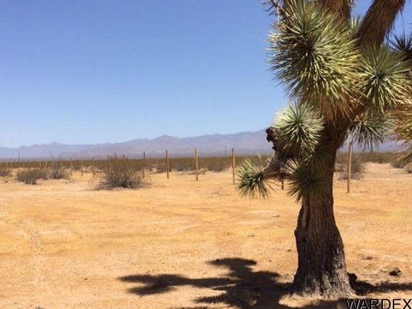 2537 E. Red Barrel Dr., Yucca, AZ 86438 Photo 17