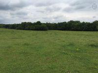 Home for sale: 5110 Drake Rd., Cedar Hill, TN 37072