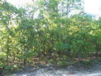 Home for sale: 136 Beacon Ridge Dr., Seven Lakes, NC 27376