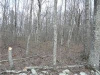 Home for sale: 00 Colburn Rd., Canterbury, CT 06331