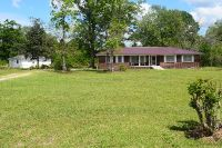 Home for sale: 250 N.W. Azalea Rd., Baxley, GA 31513