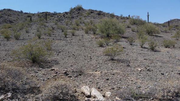 43xx W. Ceton Dr., Laveen, AZ 85339 Photo 3