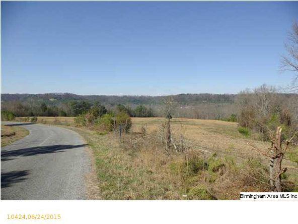 4 Horton Mill Rd., Oneonta, AL 35121 Photo 42