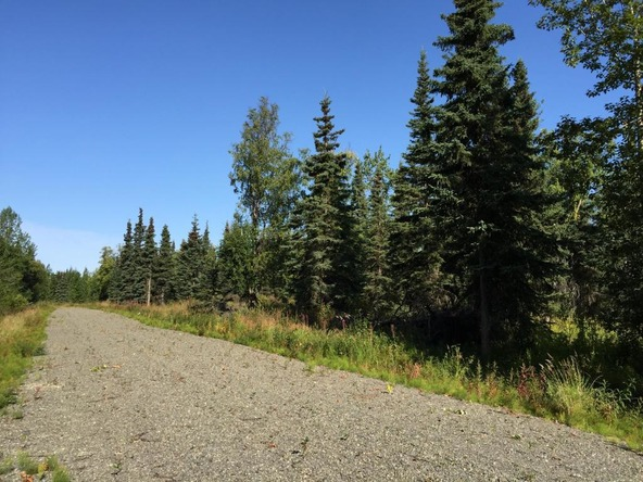 63787 Oil Well Rd., Ninilchik, AK 99639 Photo 28