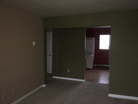 Home for sale: 110 Tracy Dr., Cissna Park, IL 60924