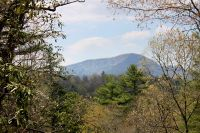 Home for sale: Lot 2 Gorge Trail Rd., Cashiers, NC 28717