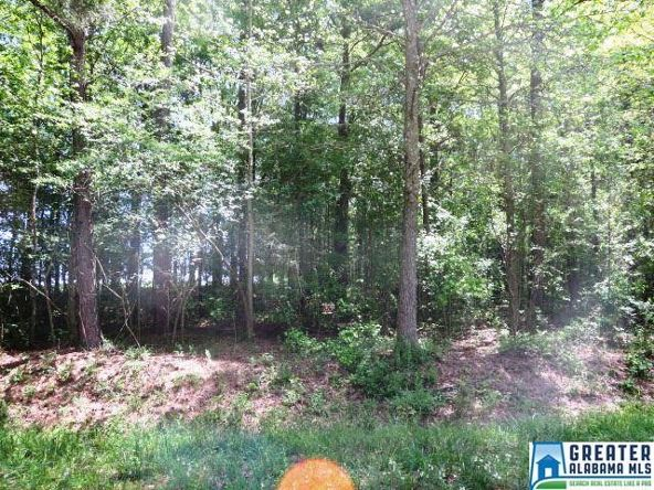 32 Acres Lystra Rd., Ashland, AL 36251 Photo 3