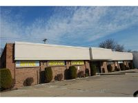 Home for sale: 2411 Fort St., Wyandotte, MI 48192