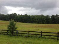 Home for sale: 3350 Tom Bartles Rd., Appling, GA 30802