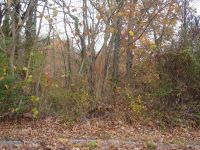 Home for sale: 0 Ashland Terrace, Chattanooga, TN 37415