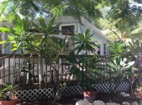 Home for sale: 20141 Kings, Sugarloaf Key, FL 33042