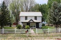 Home for sale: 5227 5800 Rd., Olathe, CO 81425