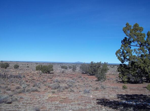 5301 S. Lariat Rd., Williams, AZ 86046 Photo 5
